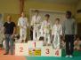 2013 - Tournoi de Saint-Jean les Deux Jumeaux
